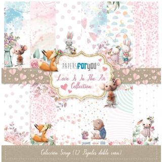 12x12 Inch Scrapbooking Paper Pack Love is in the Air